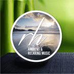 RH Ambient